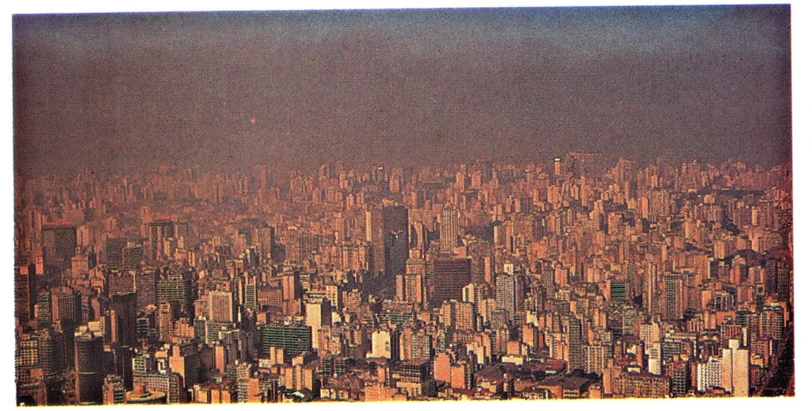 El Medio Ambiente: El Medio Ambiente (desde 1950 Hasta Principios Del Siglo XXI