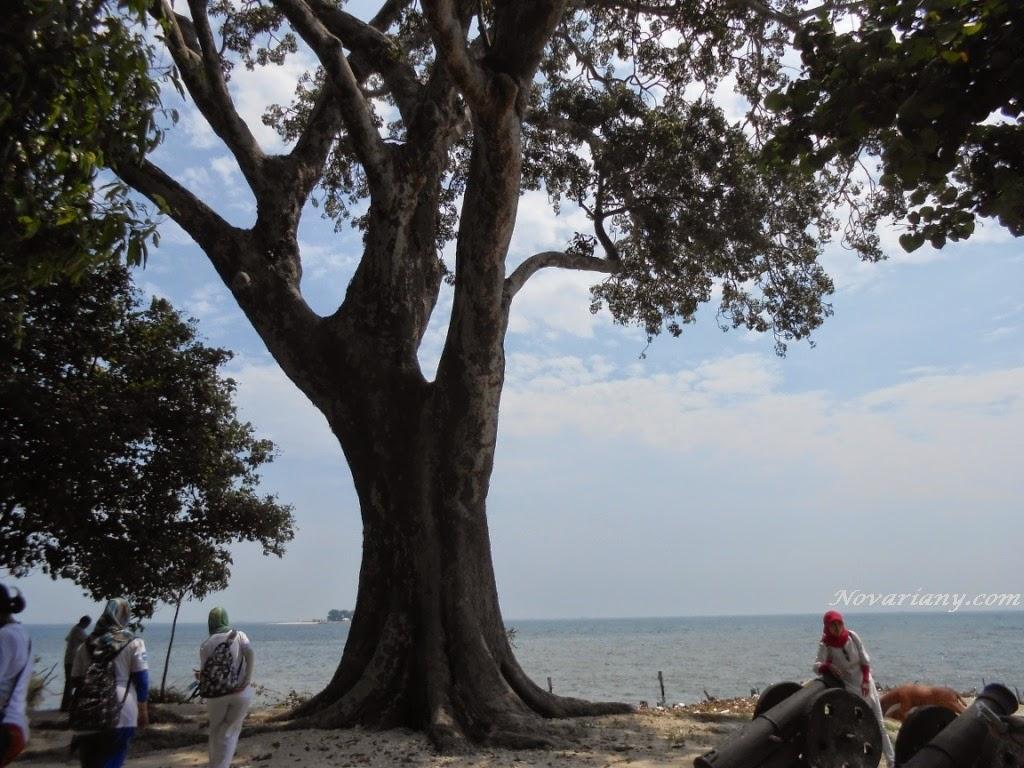 Satu Hari Terdampar Di Pulau Bidadari
