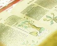 Bitkisel Tedavi Kitabı