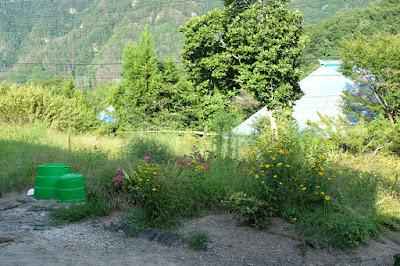 長野県生坂村の古民家カフェ ひとつ石 草刈り