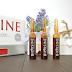 Bioxsine, Serum ziołowe przeciw wypadaniu włosów, 24 ampułki po 6 ml