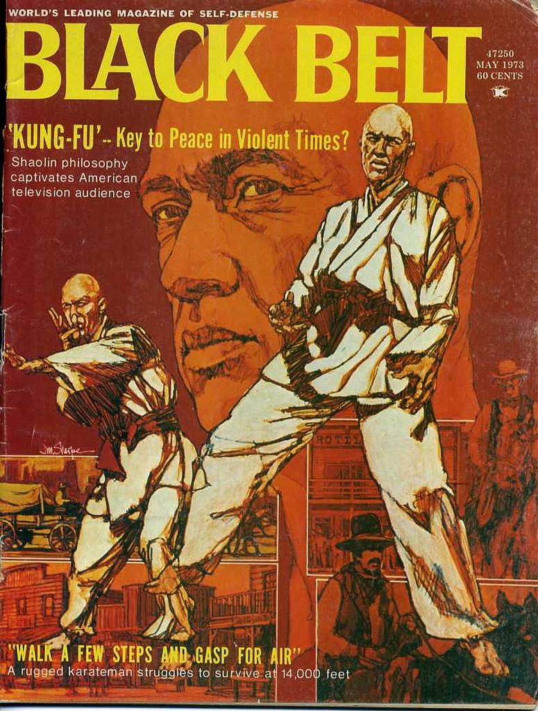 Vintage Kung Fu Fighting Covers ~ vintage everyday