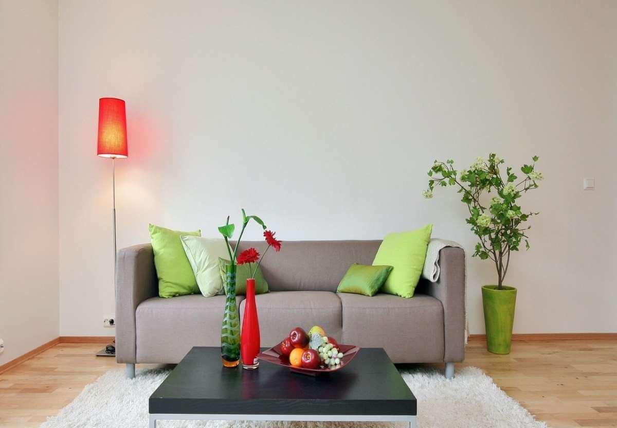 Комнатные растения и интерьер: о чем следует помнить?