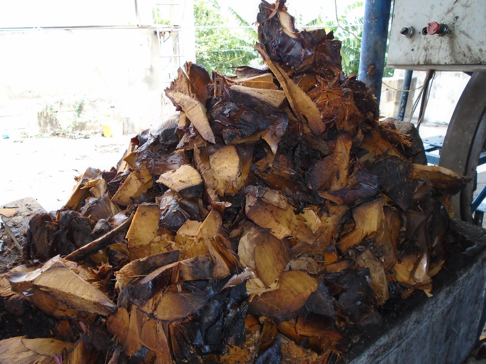 Resultado de imagen para destilación del cocuy de penca