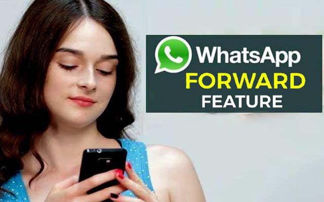 WhatsApp-tests-forward-review-include-on-Android-beta-adaptation