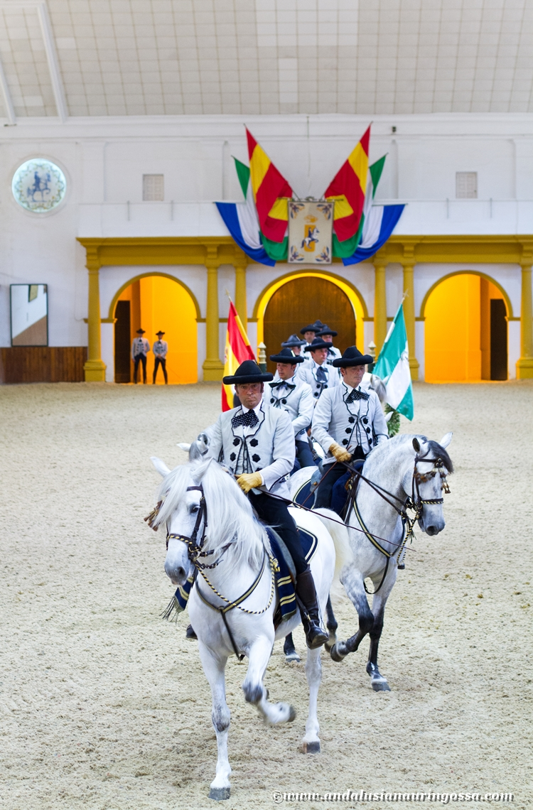 Andalusian kuninkaallinen hevoskoulu Jerez_Andalusian Royal Equestrian School Jerez_20