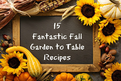 15 great autumn recipes