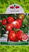 Benih, Tombatu,tomat, tahan virus,kuning, keriting, unggul, dataran rendah, tinggi, petani, Panah Merah, Tomat Tombatu Murah