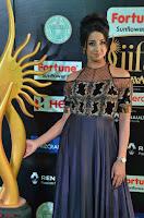 Sanjjanaa Galrani aka Archana Galrani in Maroon Gown beautiful Pics at IIFA Utsavam Awards 2017 06.JPG