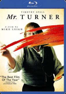 Sr. Turner (2014) DVDRip Latino