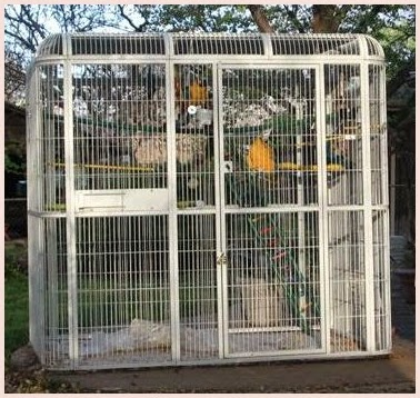 Converting A Stainless Steel Closet To An Aviary