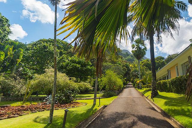 Botanischer Garten Mahe - Botanical Gardens (C) Seychelles.cc