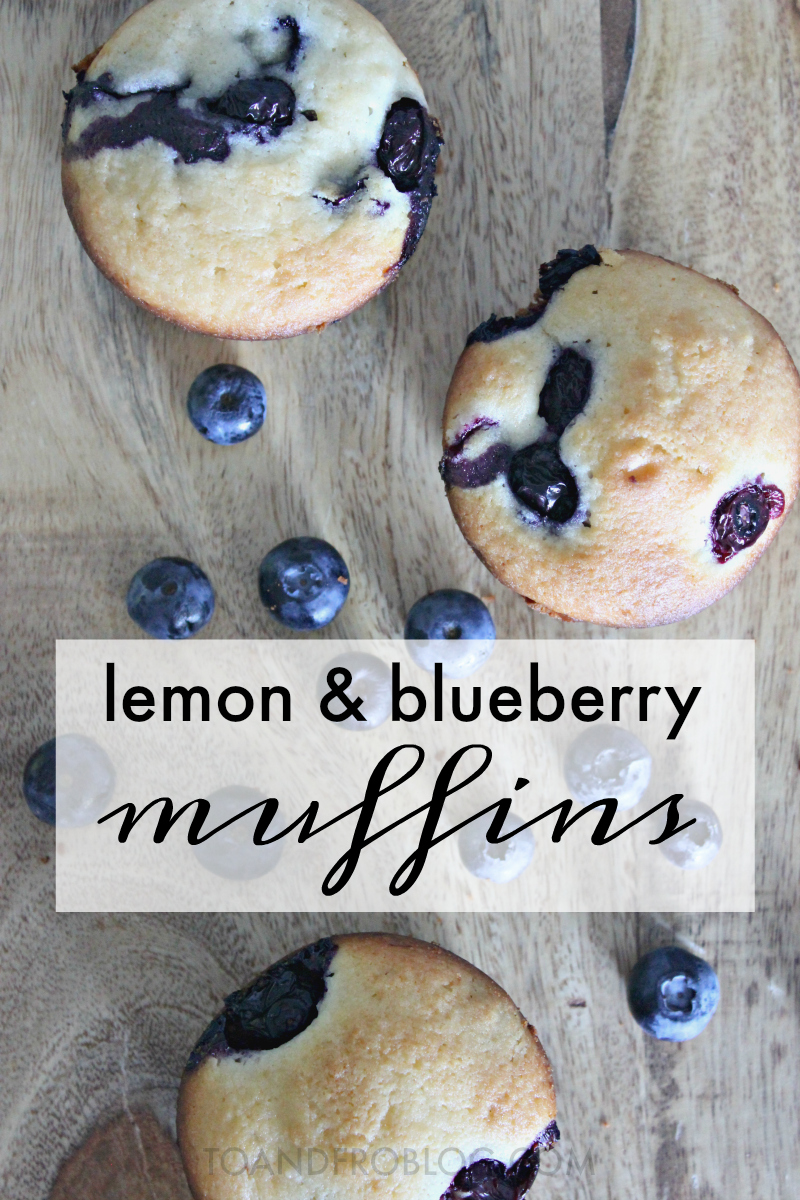 The Best Lemon and Blueberry Muffin Recipe