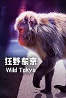 Tokyo Hoang Dã - Wild Tokyo