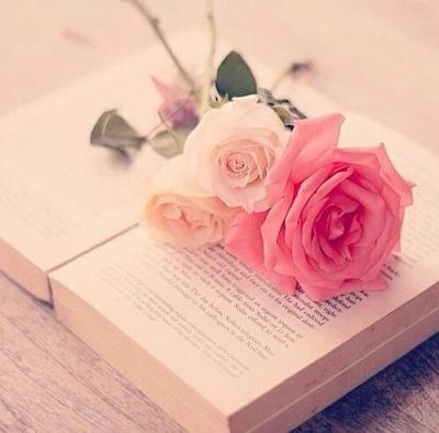 Libro con una rosa rosada abierta