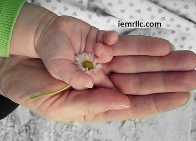 Cara Mengatur Keuangan Bagi Single Mom Secara Bijak