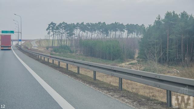 Wycinka drzew pomiędzy Szubinem a Bydgoszczą