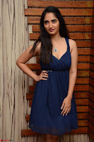 Radhika Mehrotra in a Deep neck Sleeveless Blue Dress at Mirchi Music Awards South 2017 ~  Exclusive Celebrities Galleries 071.jpg