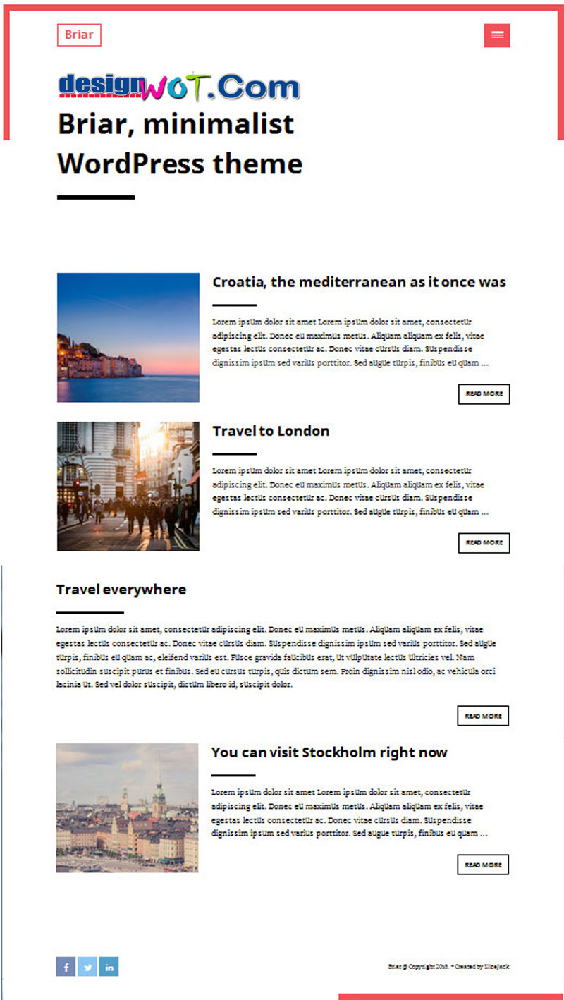 Briar minimalist free WordPress theme