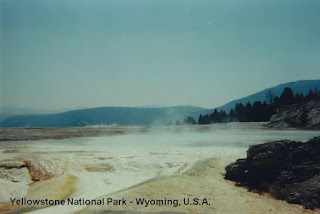 yellowstone National park usa wyoming