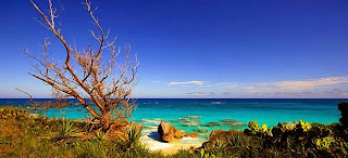The Bermuda Islands - landscape