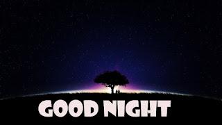 Good Night Message with night black tree
