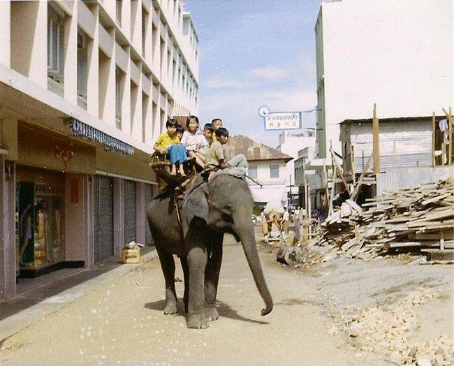 Дети катаются на слоне в Таиланде