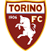 Torino FC 2017/2018 Fixtures & Results