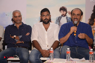 Pelli Choopulu Movie Press Meet Gallery 0031