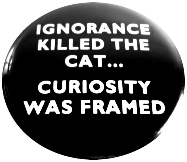 Ignorance killed the cat; Curiosity was framed