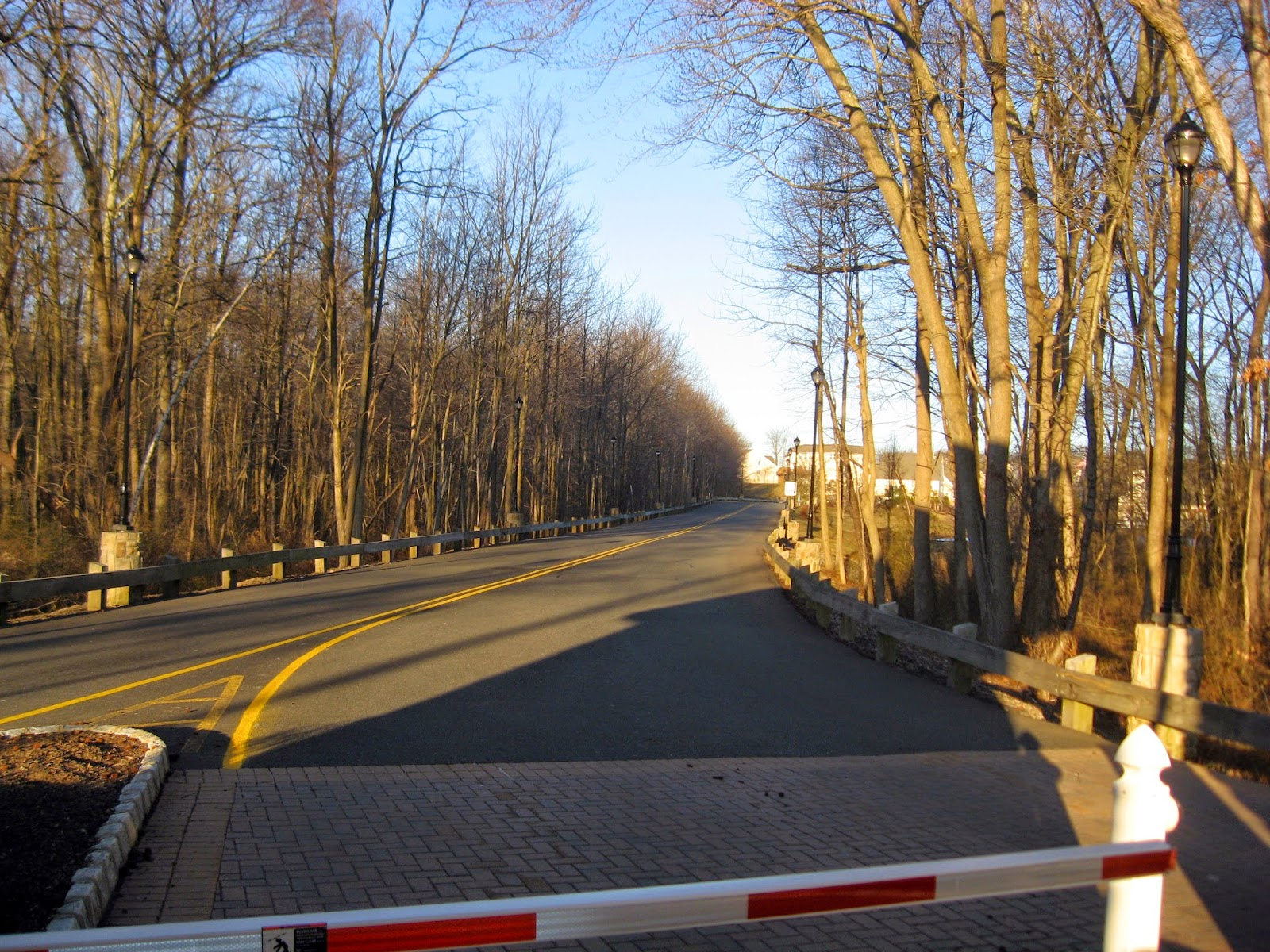 What used to be The Birch Hill Nightclub entrance roadway from Route 9 south Old Bridge, NJ  March 2015