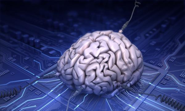 Как увеличить возможности нашего мозга