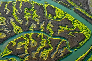 神祕沼澤地,La Isla Mínima,marshland