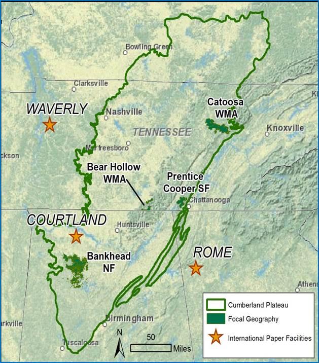 Cumberland Gal: How to Find Waterfalls Part 4-- Seeking Waterfalls ...