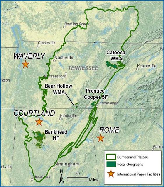Cumberland Gal: How to Find Waterfalls Part 4-- Seeking ...