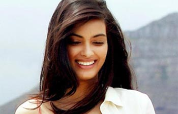 Diana Penty Wallpapers Hd Pictures And Photo Photo Gallery Diana