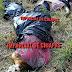 Tres personas sin vida fueron localizadas embolsadas en los límites de Chiapas con Oaxaca.