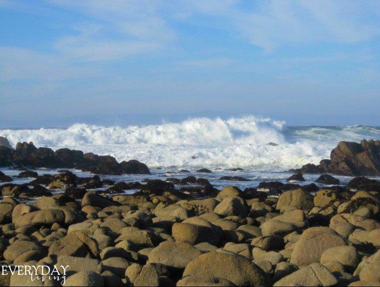 California Dreamin - Everyday Living Blog