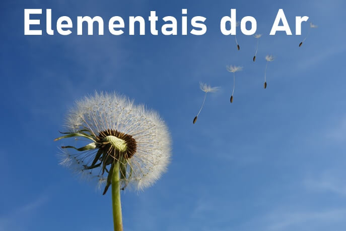 Elementais do Ar