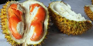 Durian merah khas Banyuwangi