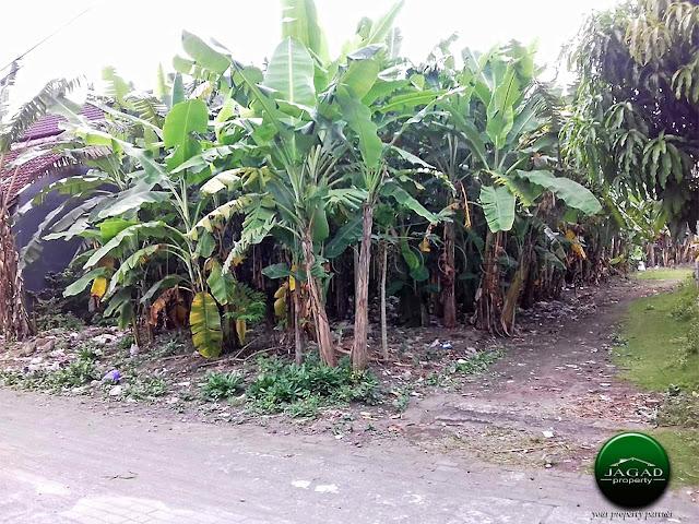 Rumah dekat Stadion Maguwoharjo