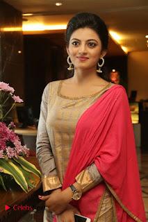 Actress Anandhi Enakku Innoru Per Irukku Press Meet 0005