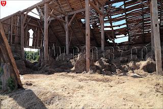 Грушевка. Ляховичский район. Фото развалин гумна