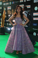 Parul Yadav in Stunning Purple Sleeveless Transparent Gown at IIFA Utsavam Awards 2017  Day 2  Exclusive 30.JPG