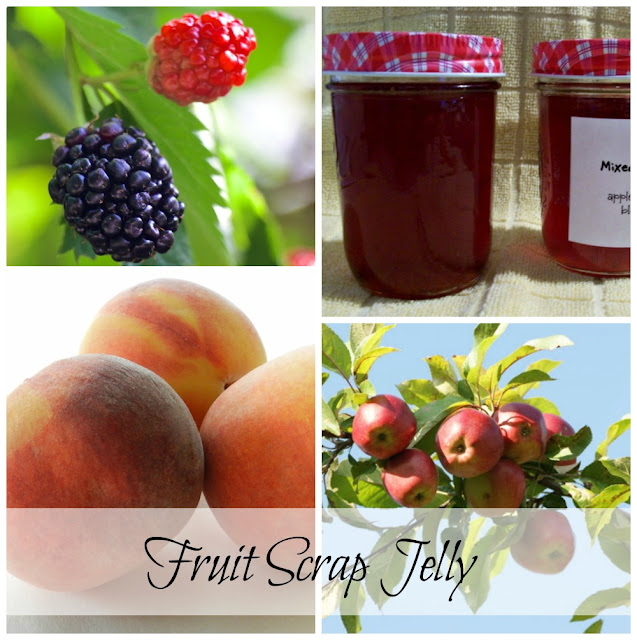 Fruit scrap jelly