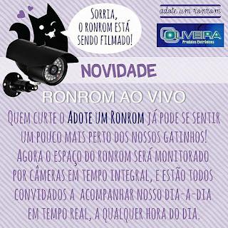 Anúncio do Big Ronrom Brasil