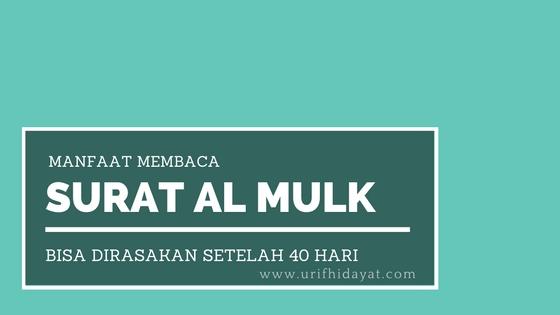Manfaat Membaca Surat Al Mulk yang Bisa Dirasakan Setelah 40 Hari