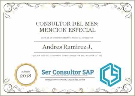 Consultor Agosto Andres Ramirez