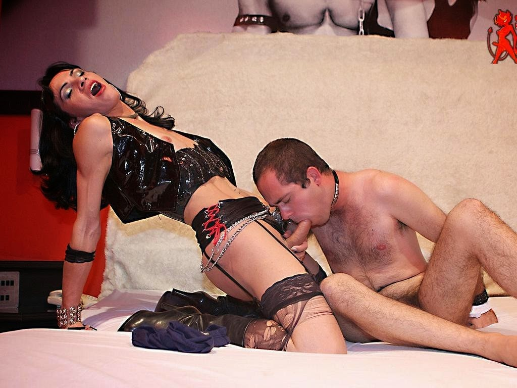 Shemale domme video galleries