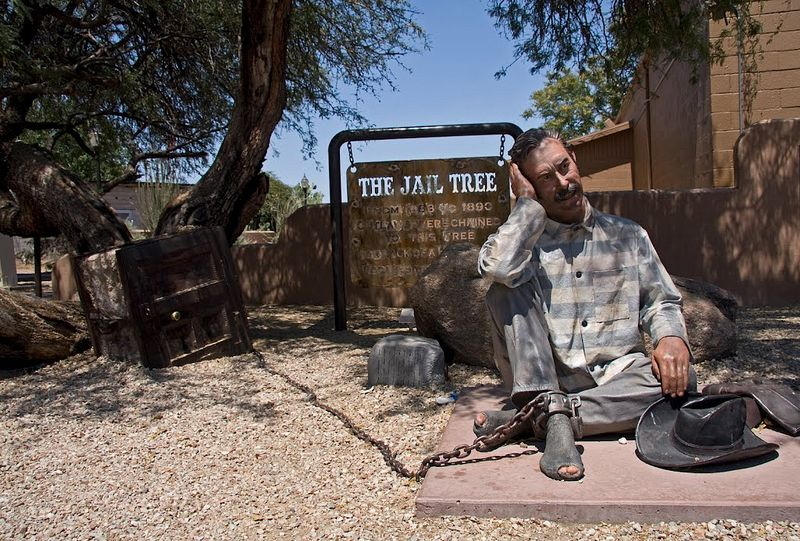 wickenburg-jail-tree-1